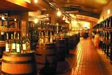 ワイン造りの本場山梨県のワイナリー巡り